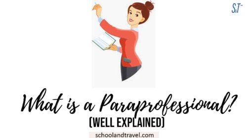 What is a Paraprofessional?