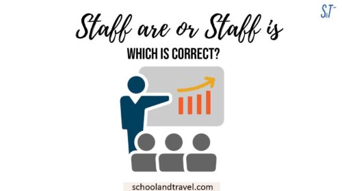 Staff are or Staff is